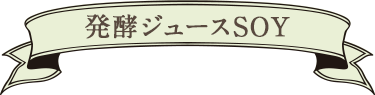 発酵ジュースSOY